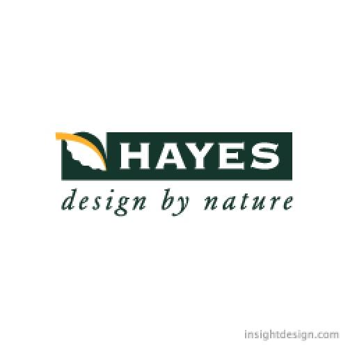 Hayes Company logo design